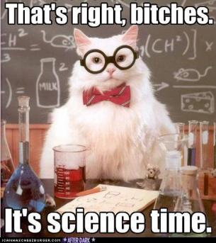 funny-pictures-cat-does-science