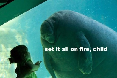 Set It All On Fire